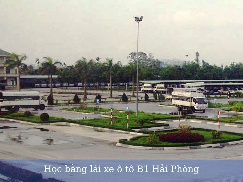 Học bằng lái xe ô tô B1 Hải Phòng